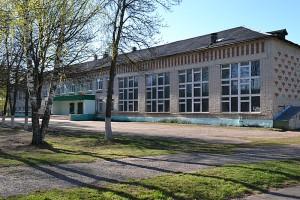 Школа п.Вольгинский фото